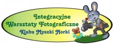 logo foto mini